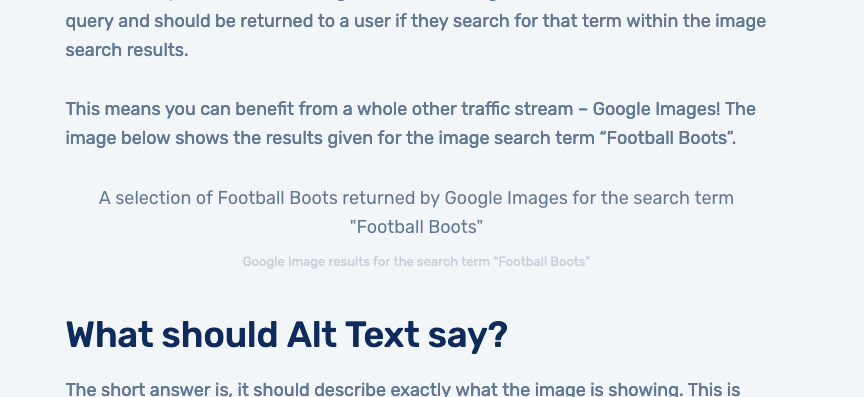 An example of alt text when an image doesn't load